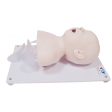 INFANT ENDOTRACHEAL INTUBATION MODEL