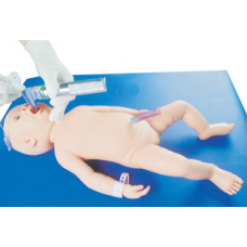 NEONATAL ENDOTRACHEAL INTUBATION MODEL